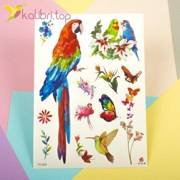 Детские, временные татуировки - попугаи - Kalibri