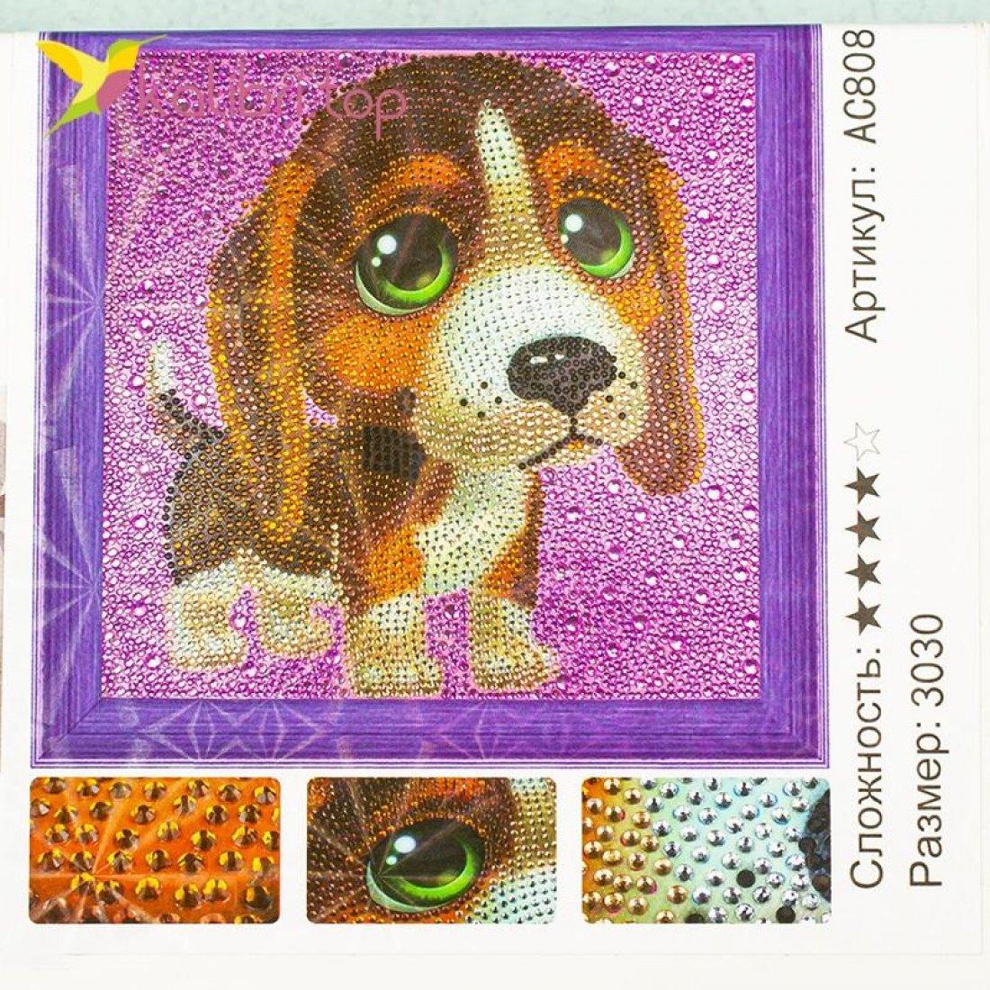 Алмазная мозаика по номерам Собачка и глаза 30*30 см оптом фото 3644