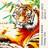 Алмазная живопись по номерам Тигр оптом фото 1