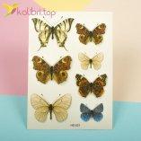 Детские татуировки с блесточками - красивые бабочки оптом фото 1