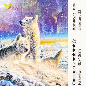 Рисования по номерам Северное сияние 30*40 см оптом фото 31
