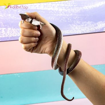 Силиконовые змеи кобры двухголовые коричневые оптом фото 01