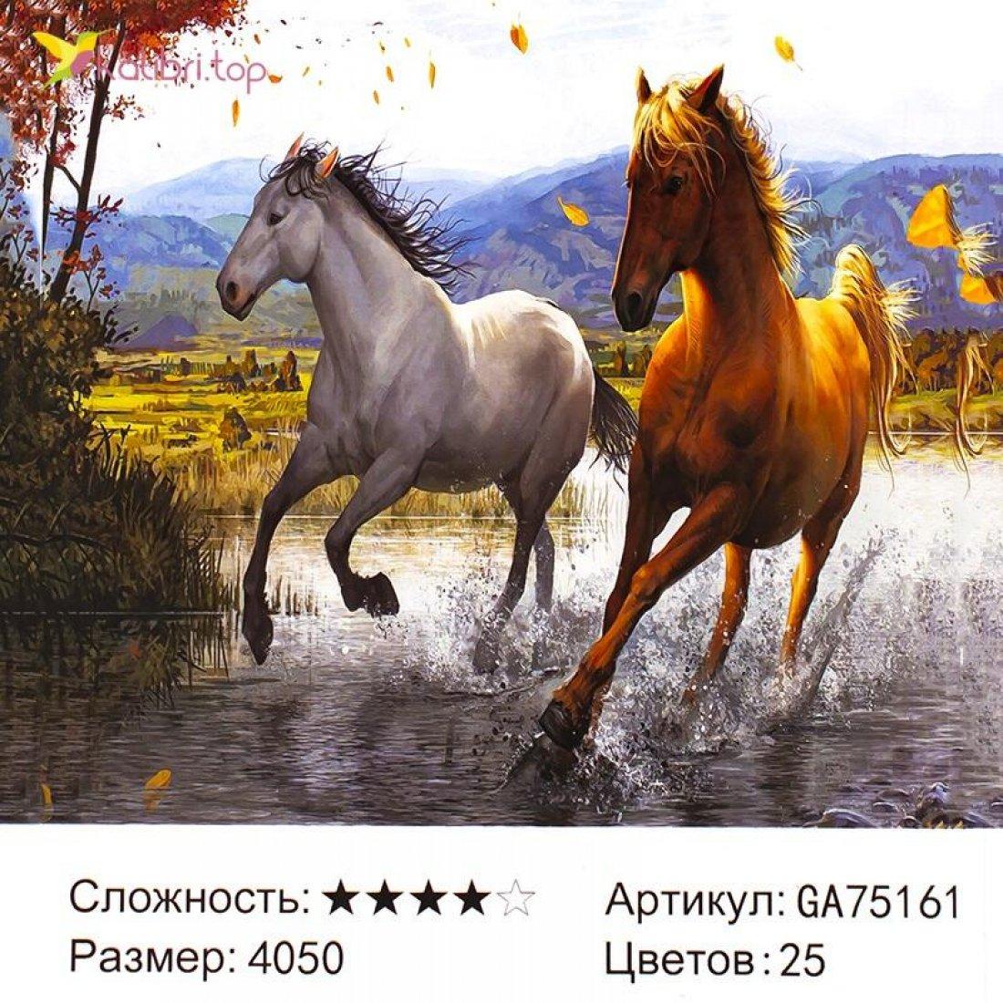 Алмазная мозаика по номерам Бег Коней 40*50 см оптом фото 11