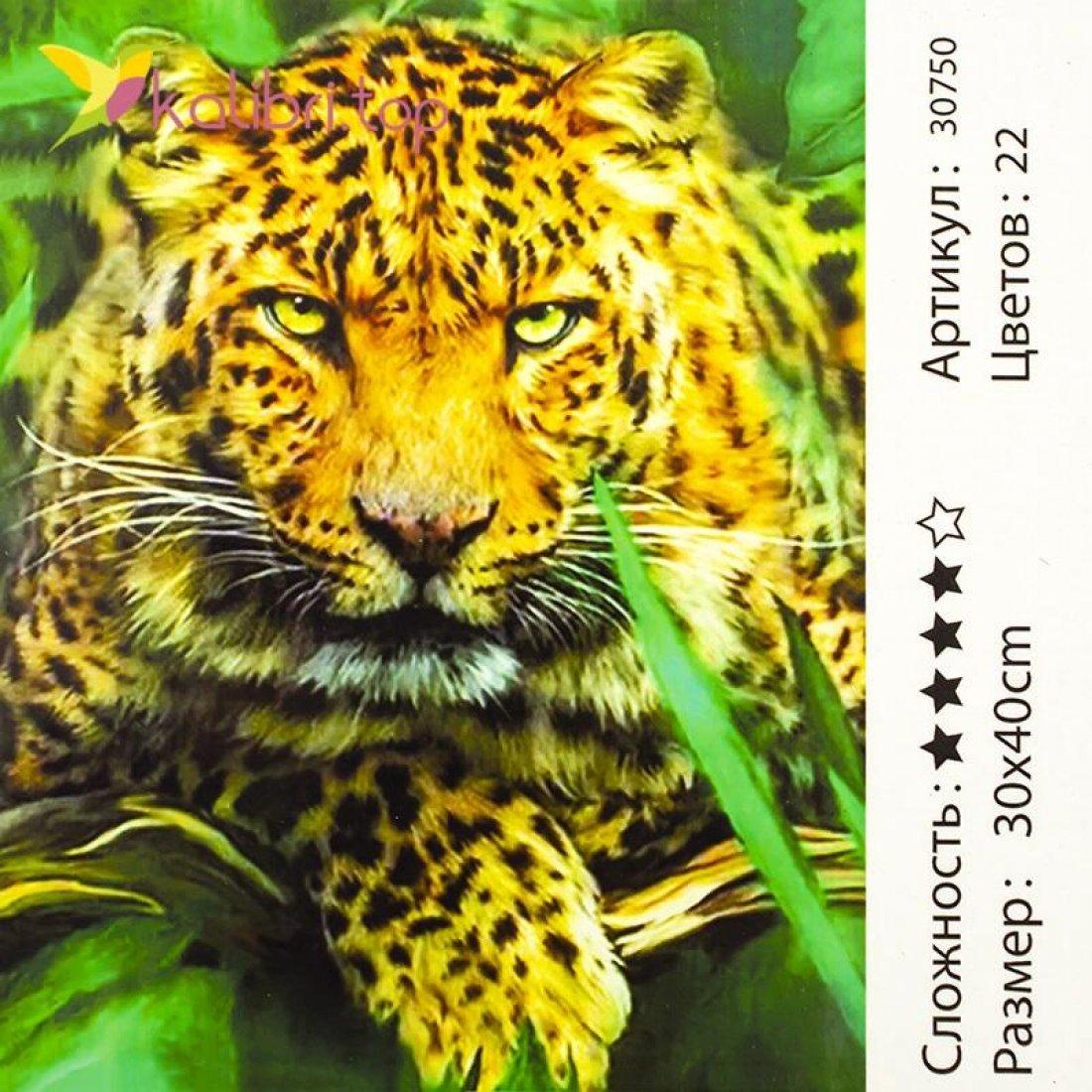 Рисования по номерам Гепард 30*40 см оптом фото 1